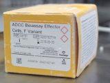 ADCC Bioassay Effector CellsF Variant Propagation Model