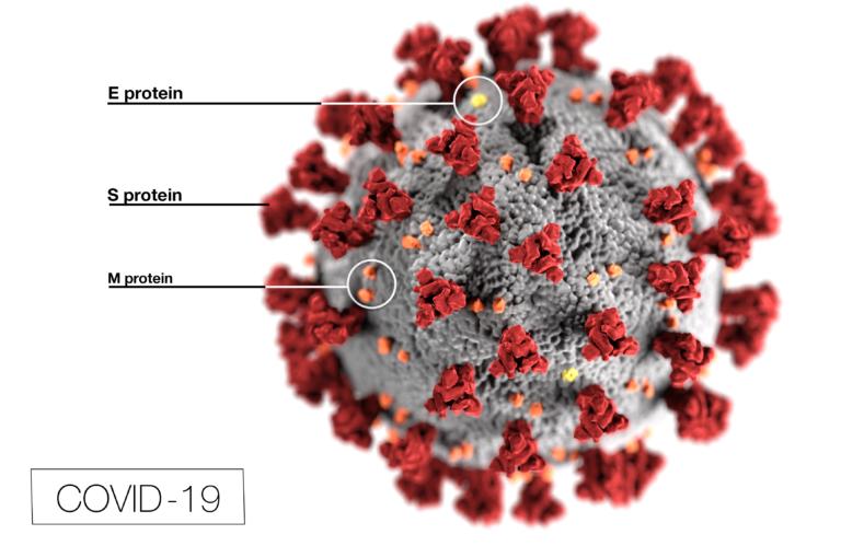 От вирусной вспышки до разработки вакцины: 10 самых популярных постов в блогах 2020 года
